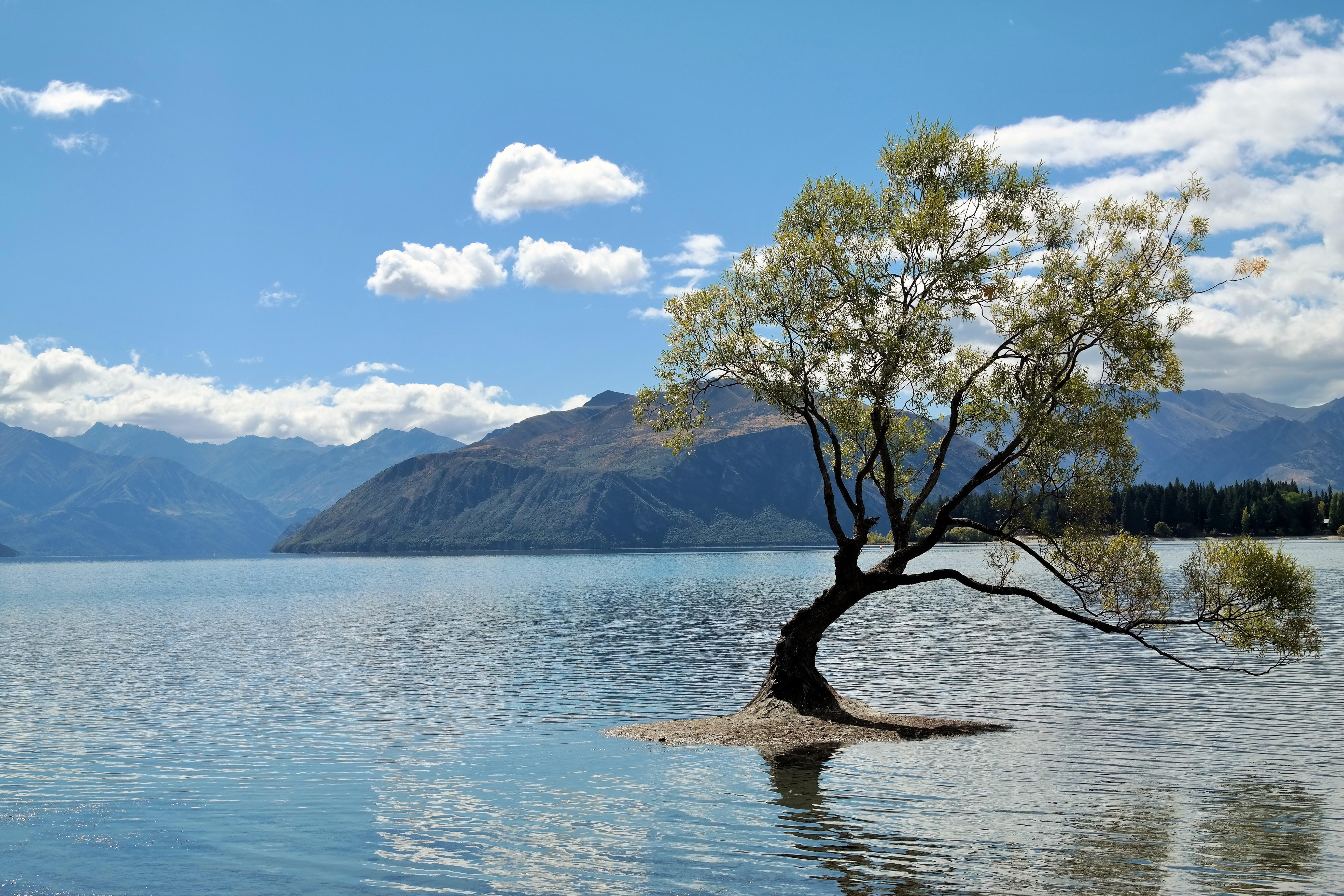 Au lac avec la salope suite - 1 9